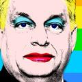 Kampány és homofóbia