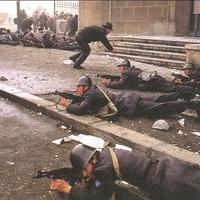 Álhírek és mészárlások