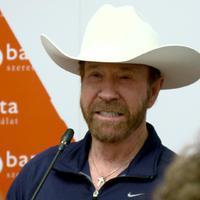 A texasi kopó
