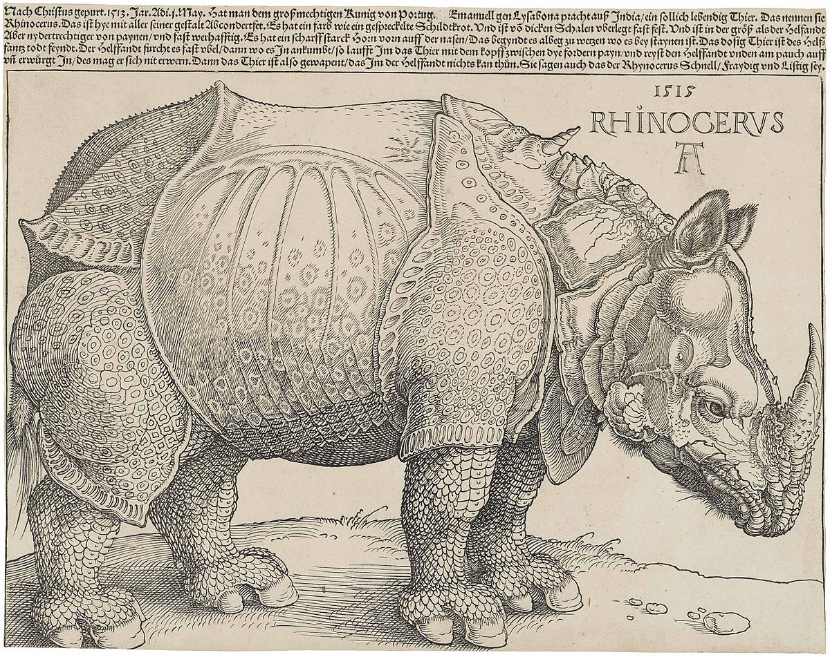 durer_s_rhinoceros_1515.jpg