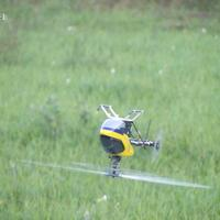RC heli pilots do it inverted