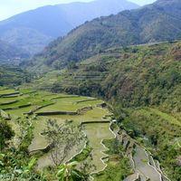 Világörökségek 5 - Rizsteraszok a Fülöp-szigeteki Kordillerákban