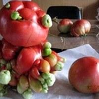 Mutáns zöldség Fukusimából?
