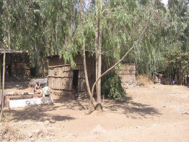etiop11.jpg