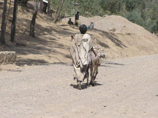 etiop8.jpg