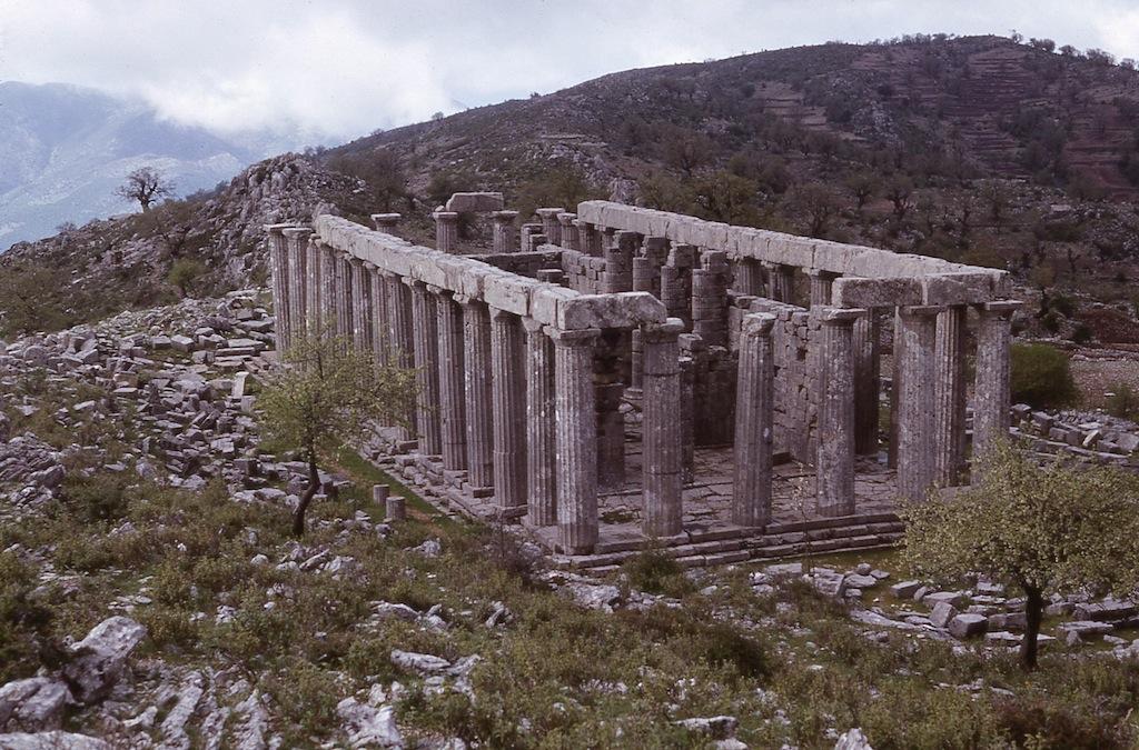 bassae_temple-of-apollo-epicurius_11966.jpg