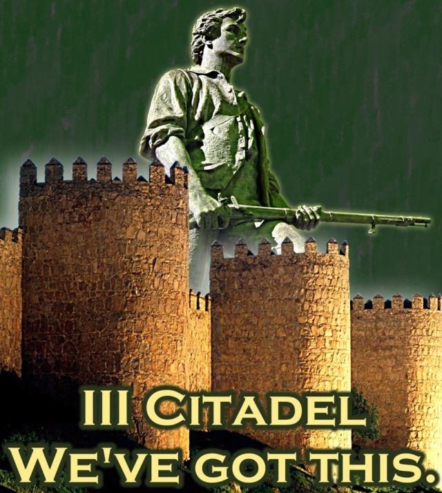 Zoomie_III citadel wgt_900.jpg