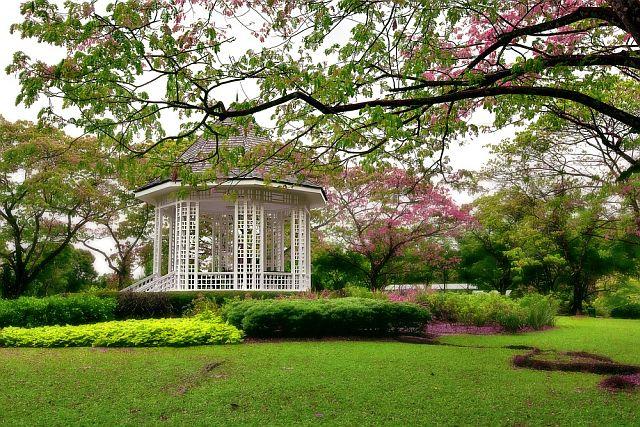 singapore-botanic-gardens_2.jpg