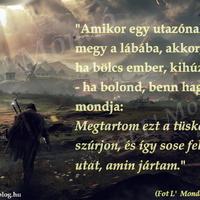 Amikor egy utazónak tüske megy a lábába, akkor, ha bölcs ember, kihúzza - ha bolond...