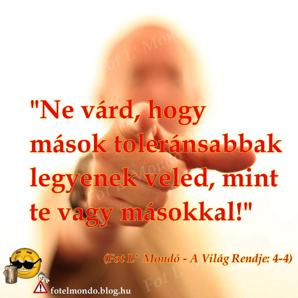 vilag_rendje_4-4_hatter_spec.jpg