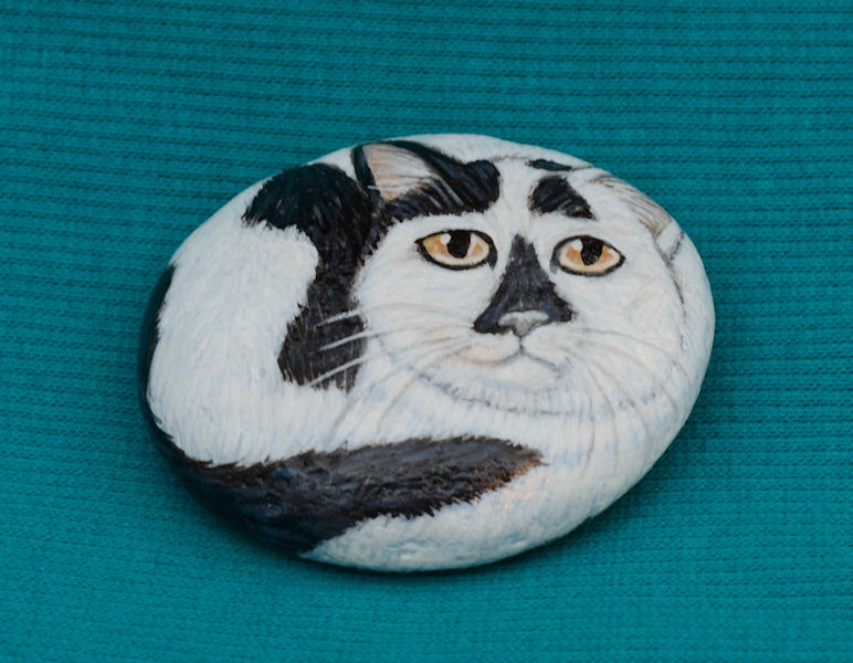 hand_painted_stone_black_white_spotted_cat.jpg