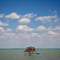 Fókusz és Távolság: Ajpek Orsolya fotóriporterrel