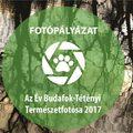 Az Év Budafok-Tétényi Természetfotósa 2017