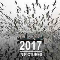 Ezek voltak a 2017-es év legjobb képei?