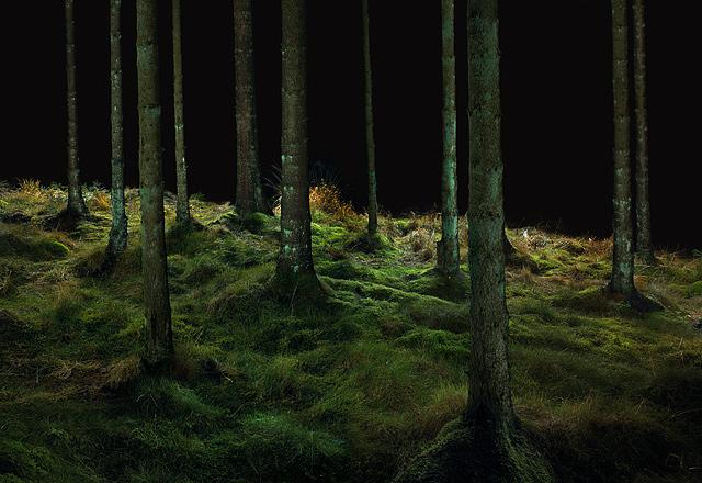 Leaplish-Moss-Rug-2004.jpg