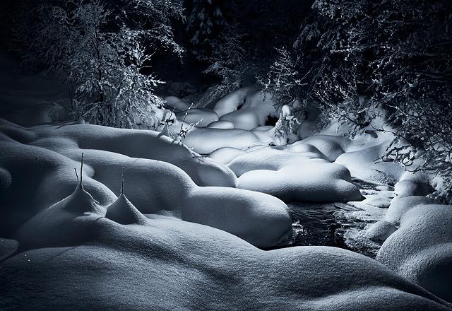 Snow-7-2007.jpg