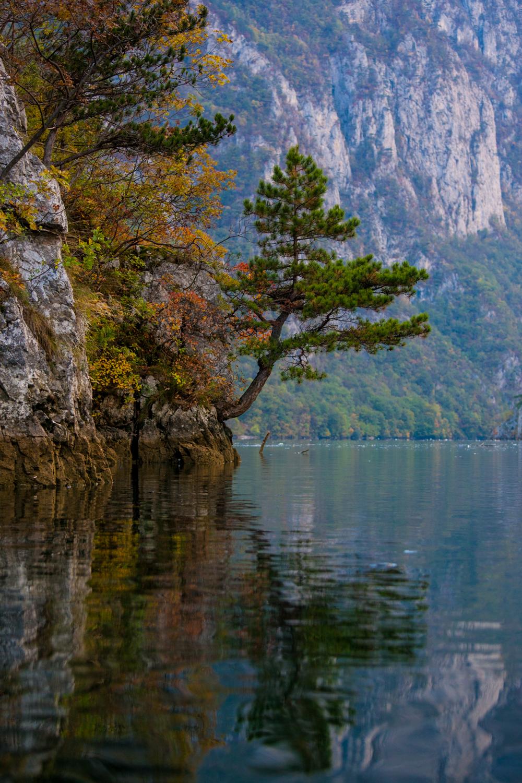 serbia-tara320151024-317.jpg
