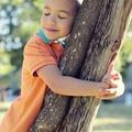 Dani fára mászott...