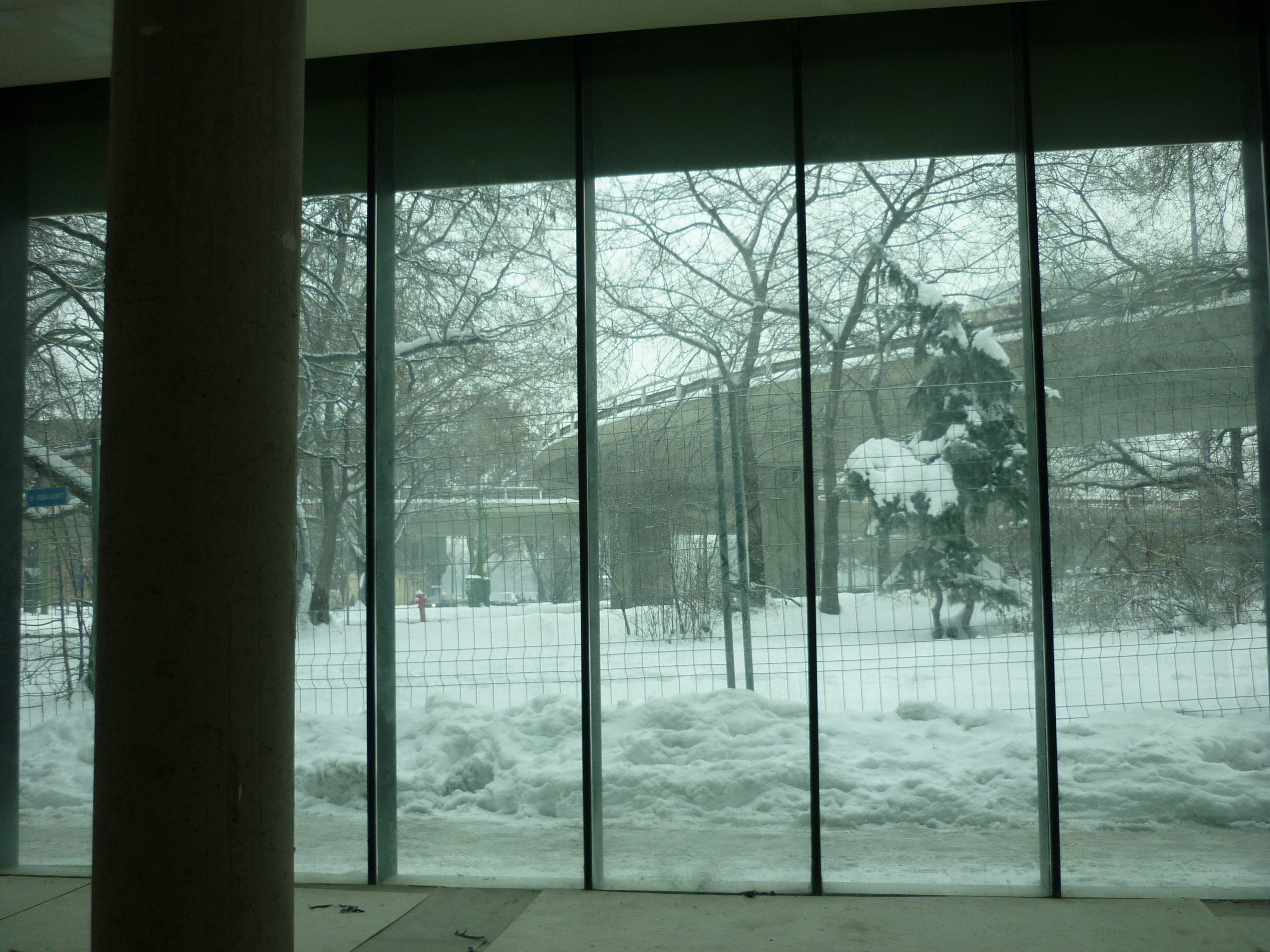 raczfurdo-20100203-05.jpg