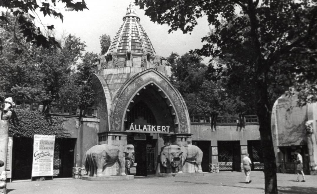 allatkert-1953korul-fortepan_hu-131944.jpg