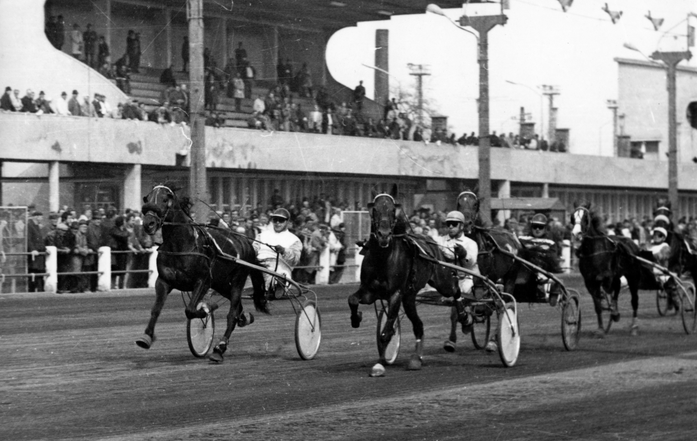 arenaplaza-1981korul-fortepan_hu-163460-