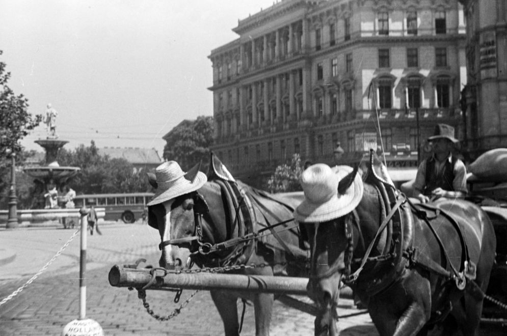 kalvinter-1940korul-fortepan_hu-180498.jpg