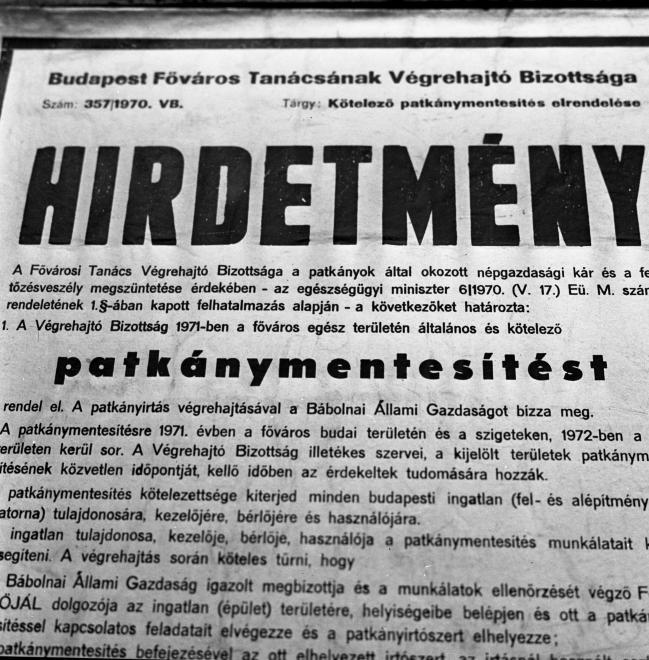 patkanymentes-1972-fortepan_hu-87815.jpg