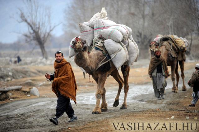 legio-afgan2.jpg
