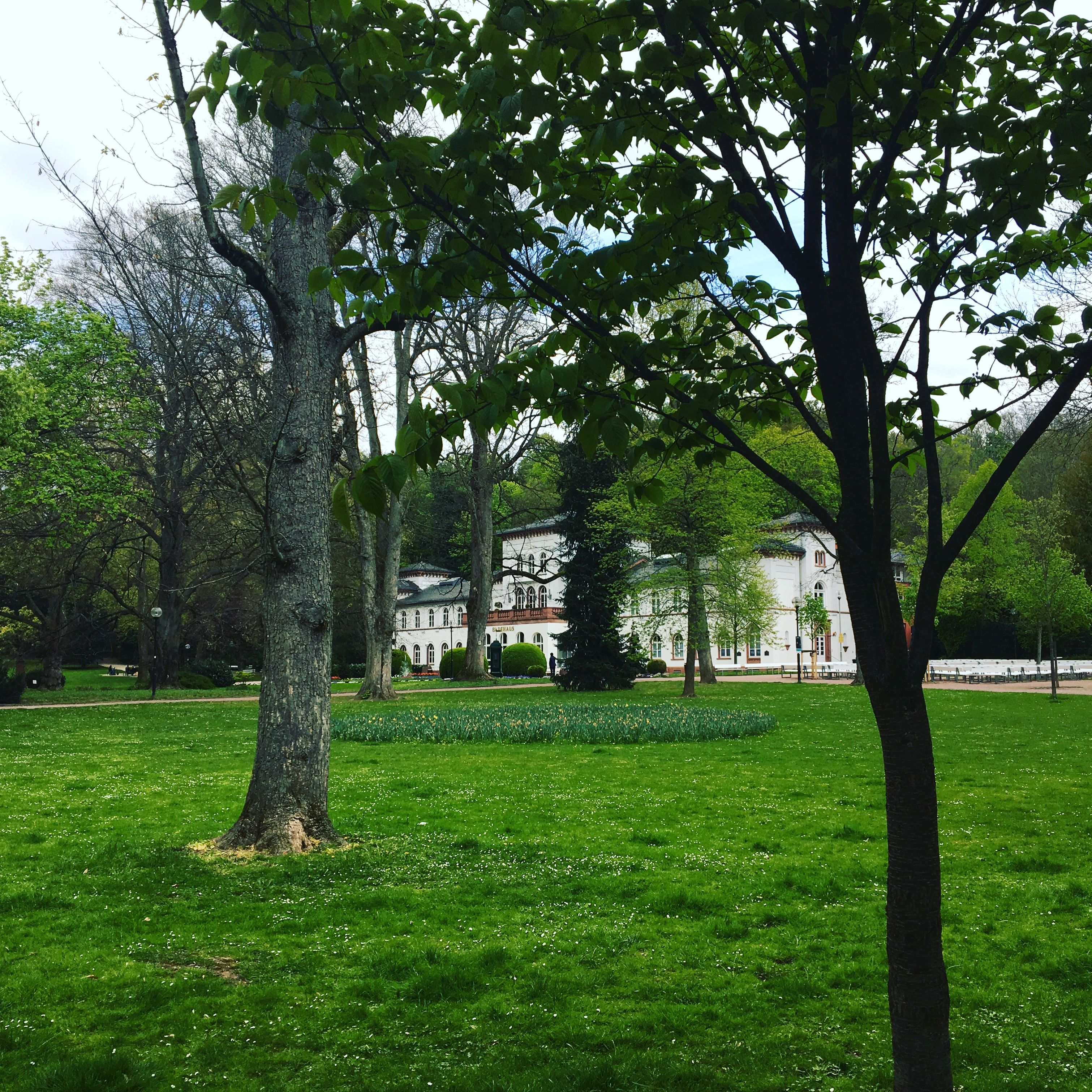 Alter Kurpark