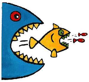 Egy tanmese a halakról