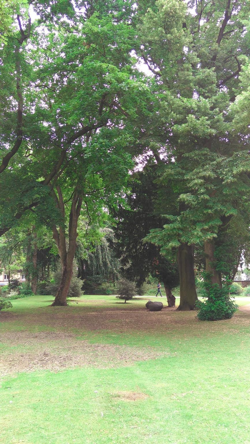 bethmann_park.jpg