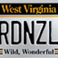 RDNZL - a jelentés