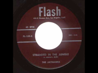 The Jayhawks: Stranded In The Jungle (1956)
