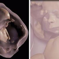 3D modell magzatokról