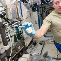 Fab Lab a világűrben