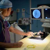 Élethű nyomtatott szervek segítik az orvosok munkáját