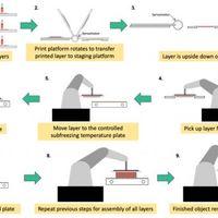 Hogyan gyorsítsuk fel a 3D bionyomtatást?