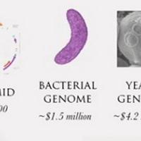DNS lézernyomtató