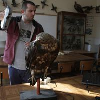 3D szkenneléssel mentenek meg veszélyeztetett madárfajokat?