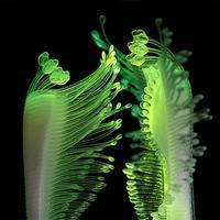 4D nyomtatással készül a jövő interaktív vízinövénye