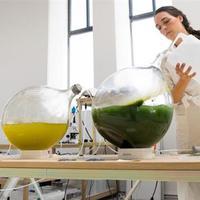 Környezetbarát nyomtatószál algából
