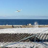 Nyomtatott minirepülő az antarktiszi vizek felett