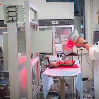 Mobil bioprinter nyomtatja a sebeket gyógyító bőrt