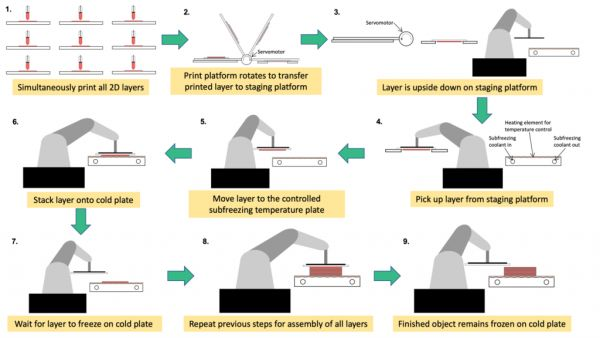 3dnyomtatas_bioprinting.jpg