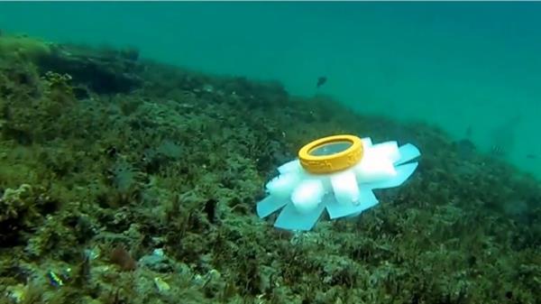 3dnyomtatas_jellyfish.jpg