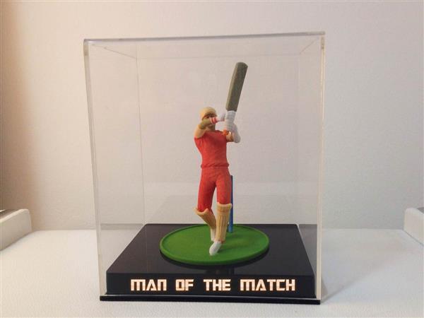 krikett2.jpeg
