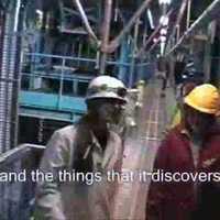 Large Hadron Collider RAP