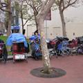 Az elesettekről és a hajléktalanokról