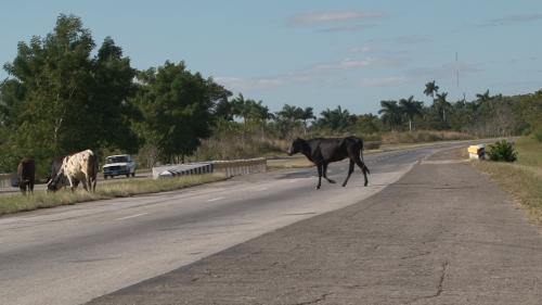 Országút, valahol, Kuba