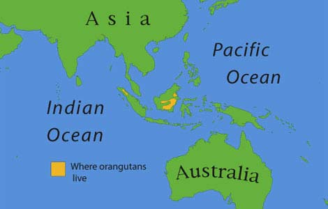 Borneo a térképen